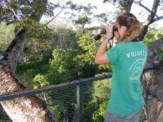 Protéger les forêts comme écovolontaire