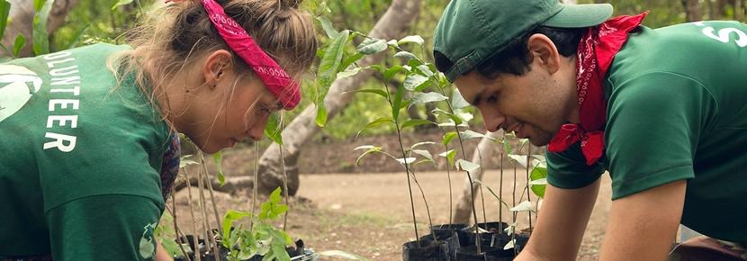 Une volontaire plante des arbres, accompagnée d'un de nos membre du staff local