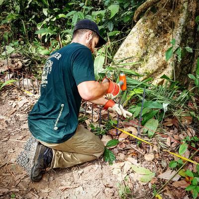 Un volontaire en mission d'écovolontariat avec Projects Abroad au Pérou