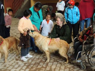 Découvrir le contact avec les chiens