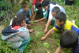 Agriculture communautaire : Argentine