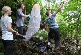 Chantiers écovolontariat et environnement : Costa Rica