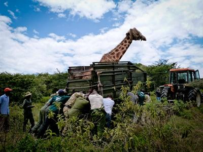 Chantier nature en Afrique au Kenya