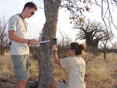 Volontariat dans plusieurs pays