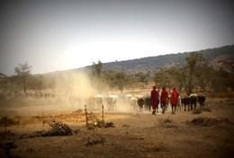 Missions de volontariat et stages en Tanzanie : Culture & Communauté