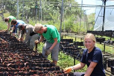 Des bénévoles travaillent en Equateur