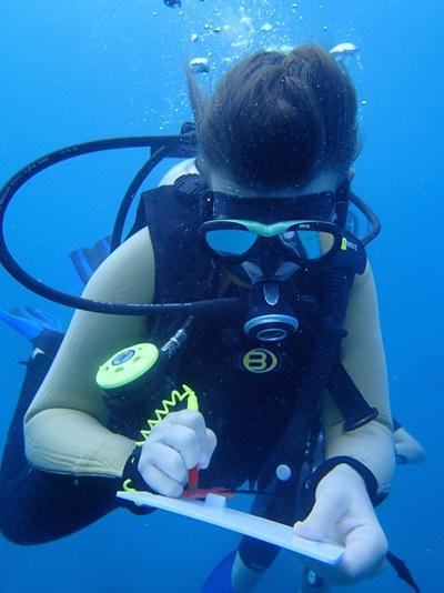 Une volontaire prend des notes lors d'une plongée