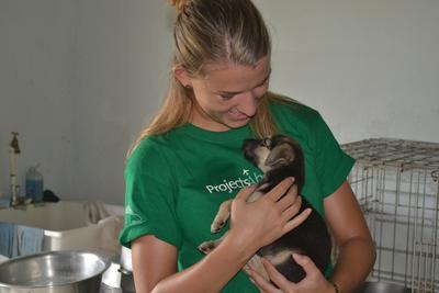Une volontaire s'occupe d'un chiot lors de sa mission en médecine vétérinaire et soins animaliers aux Samoa