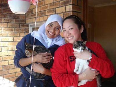 Mission de volontariat en soins animaliers