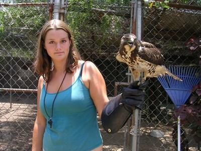 Soigner des animaux sauvages au Mexique