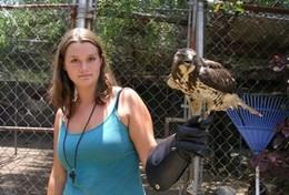 Mission humanitaire auprès d'animaux:médecine vétérinaire et soins animaliers : Mexique