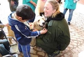 Stages Médecine vétérinaire et missions soins animaliers : Bolivie