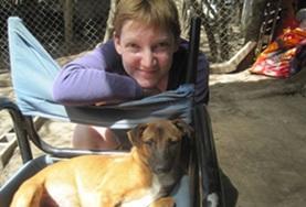 Missions de volontariat et stages en Argentine : Médecine vétérinaire   & soins animaliers