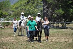 Mission de volontariat auprès d'animaux:médecine vétérinaire et soins animaliers : Afrique du Sud