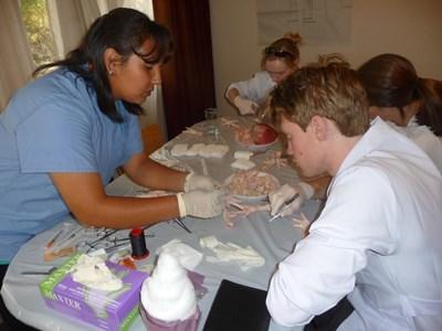 Mission de volontariat en medicine en Argnetine