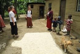 Volontariat professionnel pour la défense des Droits de l'Homme : Tanzanie