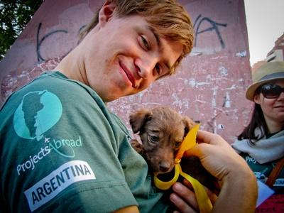 Un volontaire en mission vétérinaire en Argentine prend soin d'un chiot dans une clinique