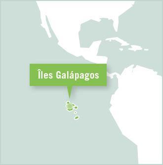 Carte des missions de volontariat en Equateur - Galápagos