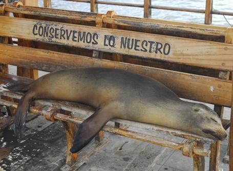 Bénévolat en Amérique centrale