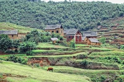 Paysage rural de l-île de Madagascar