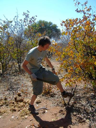 Volunteering on a Conservation & Environment project in South Africa