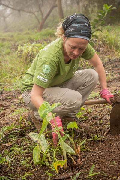 une femme en service volontaire international d'écovolontariat en Equateur